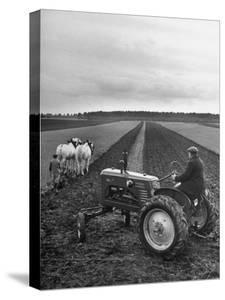 French Farmer Georges Raoul Fremond Trying Out His New Massey-Harris Tractor Obtained Through Eca
