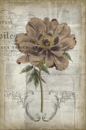 https://imgc.artprintimages.com/img/print/french-floral-ii_u-l-pxn06l0.jpg?p=0
