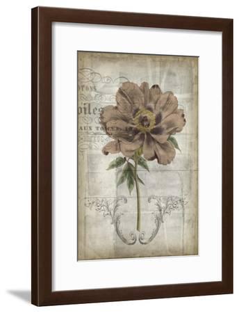 French Floral II-Jennifer Goldberger-Framed Art Print