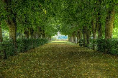 French Gardens-Shelley Lake-Premium Giclee Print