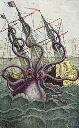 Giant Octopus, Illustration from 'L'Histoire Naturelle Generale Et Particuliere Des Mollusques'