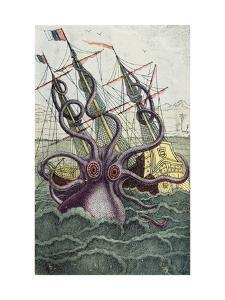 Giant Octopus, Illustration from 'L'Histoire Naturelle Generale Et Particuliere Des Mollusques' by French