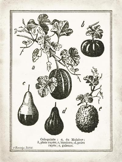 French Gourds-Gwendolyn Babbitt-Art Print