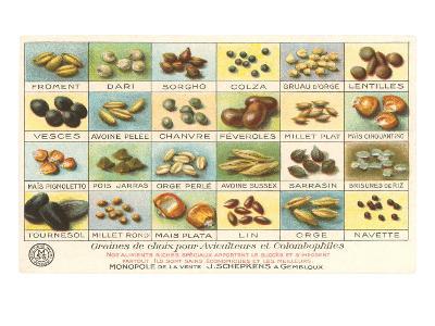 French Grain Chart--Art Print