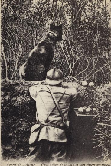 French Grenadier and His Sentry Dog, Aisne Front, France, World War I--Photographic Print