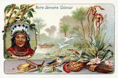 French Guiana, from a Series of Collecting Cards Depicting the Colonial Domain of France, C. 1910--Giclee Print