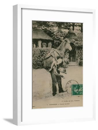 Postcard of a Man Carrying a Donkey, Sent in 1913