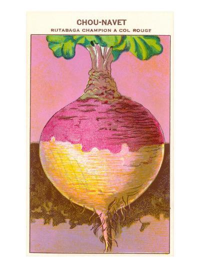 French Rutabaga Seed Packet--Art Print