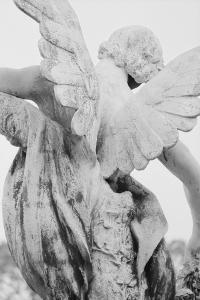 Angel by French School