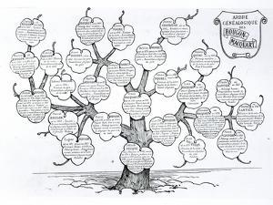 Genealogical Tree of the Rougon-Macquart Family by French School