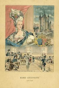 Marie Antoinette by French School