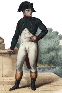 Portrait of Napoleon Bonaparte (1768-1821) as First Consul by French School
