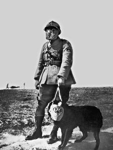 French Soldier and Dog Wearing Gas Masks on the Western Front, 1917