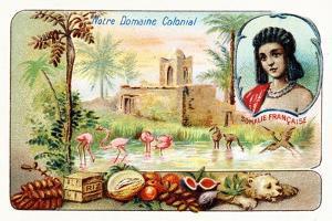 French Somaliland