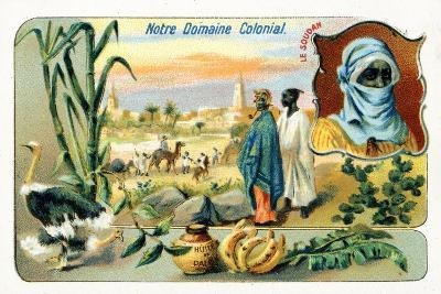 French Sudan, from a Series of Collecting Cards Depicting the Colonial Domain of France, C.1910--Giclee Print
