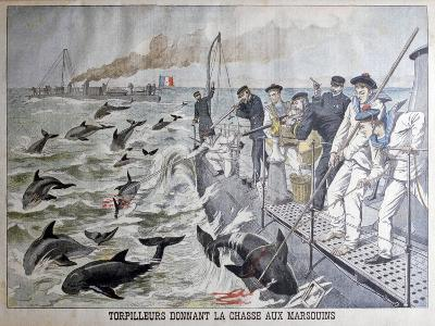 French Torpedo Boat's Hunting Porpoises, 1903--Giclee Print