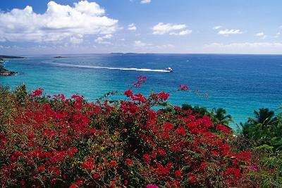 Frenchmans Bay Panorama St Thomas USVI-George Oze-Photographic Print