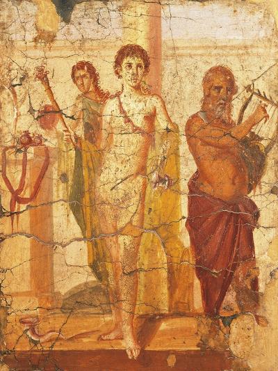 Fresco Depicting Hermaphrodite and Silenus, House of Centenary, Pompeii, Campania--Giclee Print