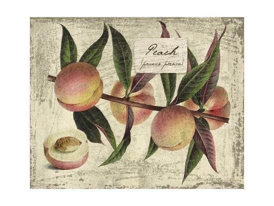 Fresco Fruit IX-Kate Ward Thacker-Art Print
