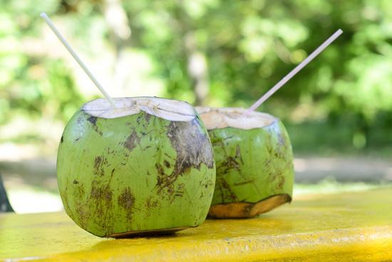 Fresh Coconut-Paul_Brighton-Photographic Print