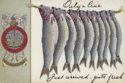Fresh Fish of Folkstone--Giclee Print