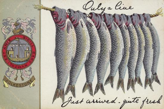 Fresh Fish of Folkstone--Giclee Print