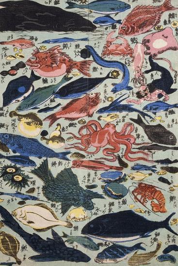 Fresh Fish--Giclee Print