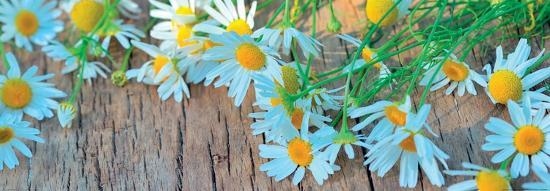 Fresh Flowers on the Wooden Table--Art Print
