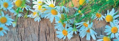 https://imgc.artprintimages.com/img/print/fresh-flowers-on-the-wooden-table_u-l-f6c0pk0.jpg?p=0