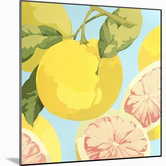 Fresh Grapefruits-Martha Negley-Mounted Premium Giclee Print