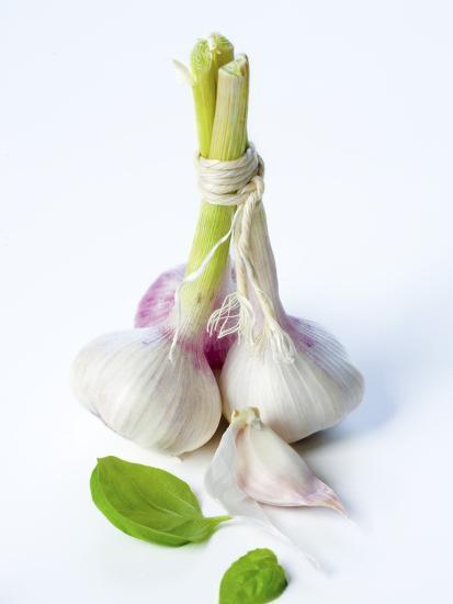Fresh Green Garlic-Ira Leoni-Photographic Print