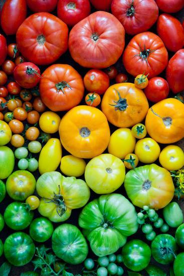 Fresh Heirloom Tomatoes Background, Organic Produce at a Farmer's Market. Tomatoes Rainbow.-Letterberry-Photographic Print