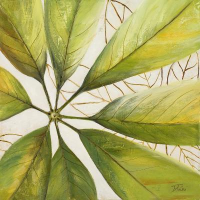 Fresh Leaves II-Patricia Pinto-Premium Giclee Print