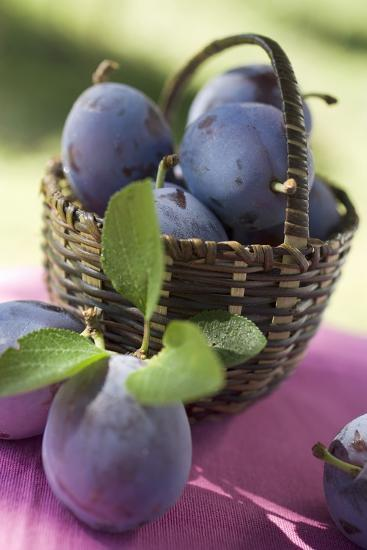 Fresh Plums in a Basket-Eising Studio - Food Photo and Video-Photographic Print
