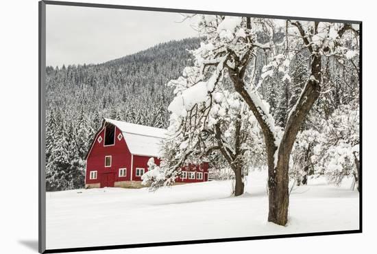 Fresh Snow on Red Barn Near Salmo, British Columbia, Canada-Chuck Haney-Mounted Photographic Print