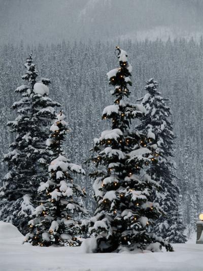 Fresh Snowfall at the Chateau Lake Louise-Richard Nowitz-Photographic Print