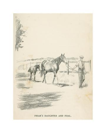 https://imgc.artprintimages.com/img/print/friar-s-daughter-and-foal_u-l-f8rdt50.jpg?p=0