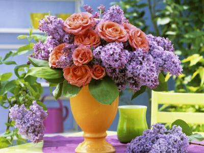 Arrangement of Roses and Lilac by Friedrich Strauss
