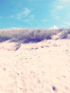 Dune on the Baltic Beach Close Graal-MŸritz by Frina