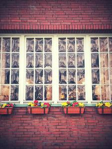 Window Front with Window Boxes of the Hotel 'Alt NŸrnberg' in Hamburg by Frina