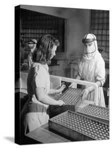 Sealed Vials of Penicillin Being Passed from the Sterile Production Room to Packaging Room by Fritz Goro
