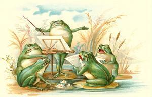 Frog Ensemble