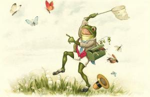 Frog Lepidopterist