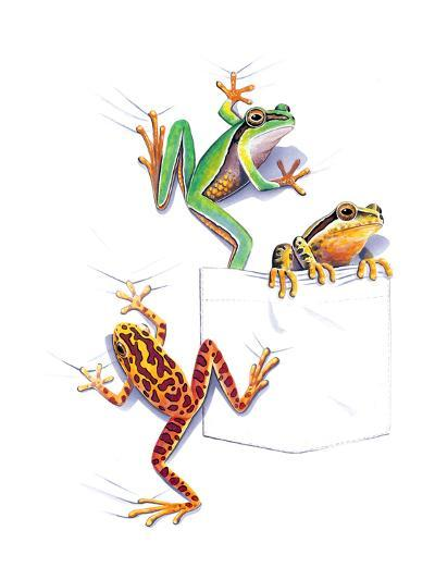 Frogs--Giclee Print