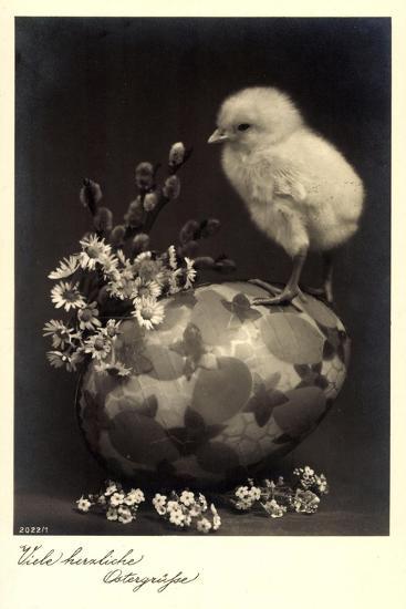 Frohe Ostern, Küken Sitzt Auf Einem Osterei,Kätzchen--Giclee Print