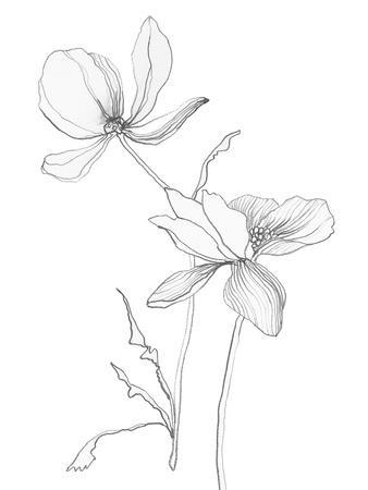 https://imgc.artprintimages.com/img/print/from-my-garden-ii_u-l-f8mbqe0.jpg?p=0