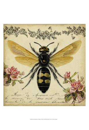https://imgc.artprintimages.com/img/print/from-the-rose-garden-i_u-l-f5q4490.jpg?p=0