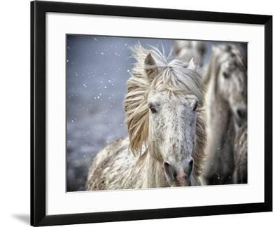 Frontal Run-Marco Carmassi-Framed Photographic Print