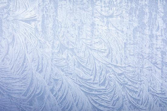Frost on automobile silver fender-Darrell Gulin-Photographic Print
