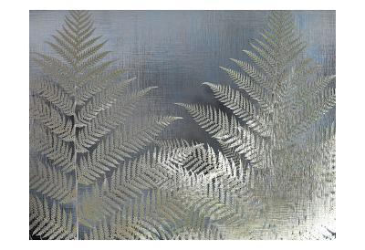 Frosted Ferns-Kimberly Allen-Art Print